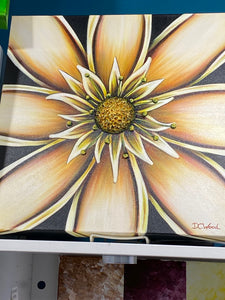 Flower Power Canvass Art