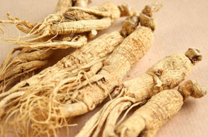 Eleuthero - Eleutherococcus Root Formally Known as Siberian Ginseng