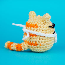 Load image into Gallery viewer, Cat Crochet Kit