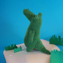 Load image into Gallery viewer, Klaus the Crocodile Crochet Kit