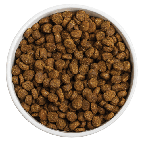 Redbarn Whole Grain Ocean Recipe Dry Dog Food
