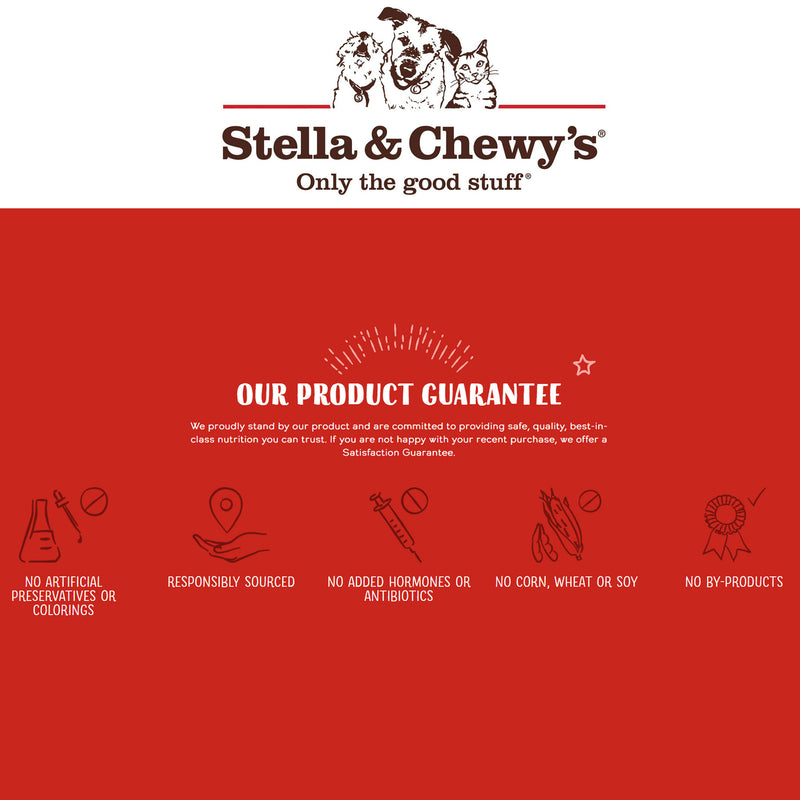 Stella & Chewy's Raw Coated Duck Biscuits For Dogs, 9oz