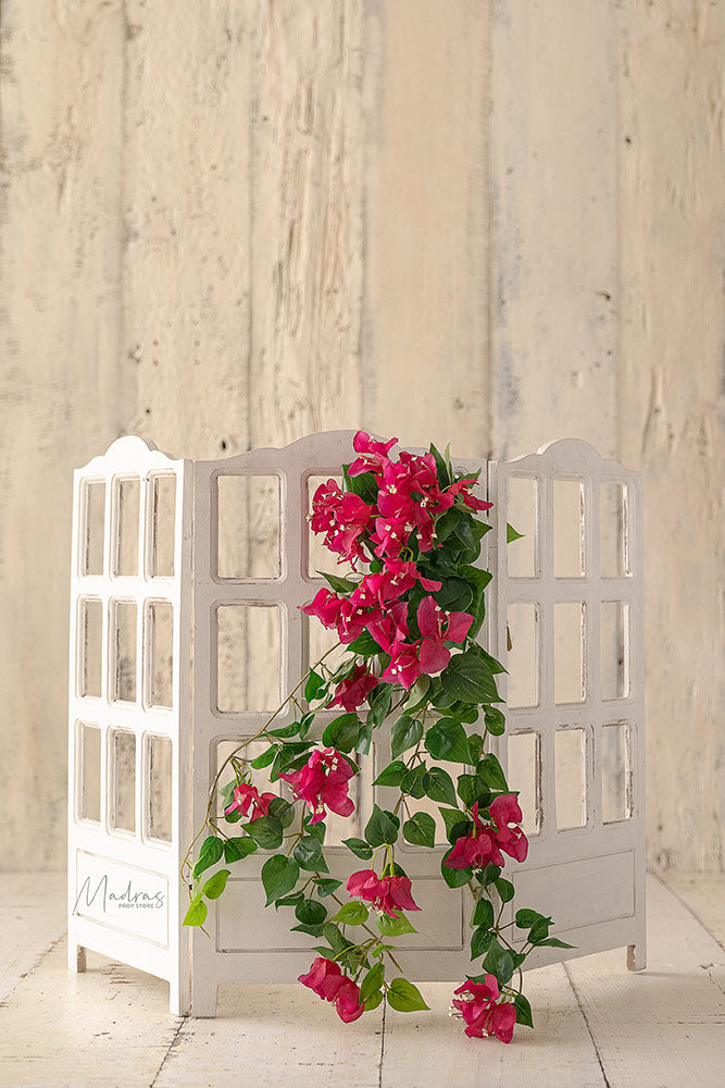 Rentals - Bougainvillea Bunch