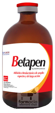 Betapen 100 ml