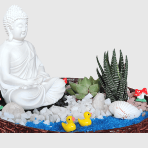 Meditating Buddha - Miniature Garden Set - Plants for Gifting