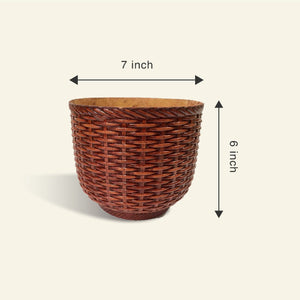 Money Plant Golden In Woven Vase Planter - Leafy Island
