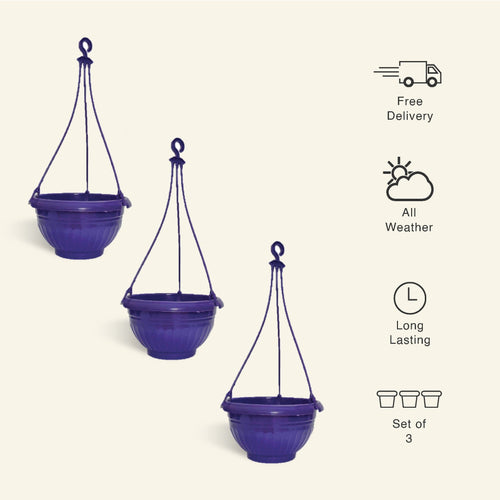 9 Inch Purple Color Hanging Pots- Set of 3 - Leafy Island