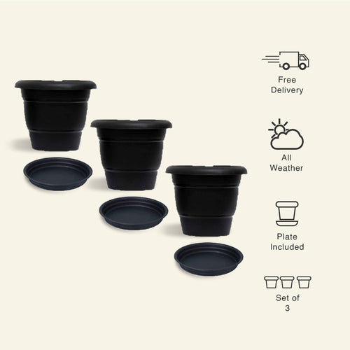 8 inch Black Garden/ Indoor Pot - Set of 3 + 3 Plates - Leafy Island
