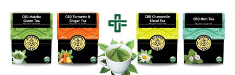Buddha CBD Tea is recommended by Thryv Organics