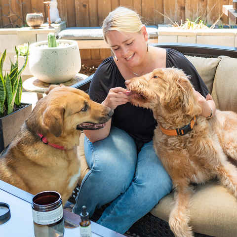 Can CBD Help Anxious Dogs with Fireworks? Kristi Kelley with her dogs Wes and Chief.