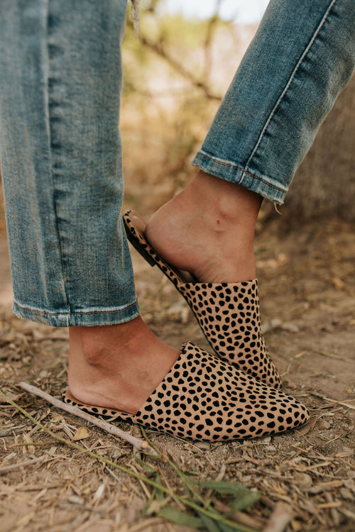 THE SO WILD CHEETAH MULE