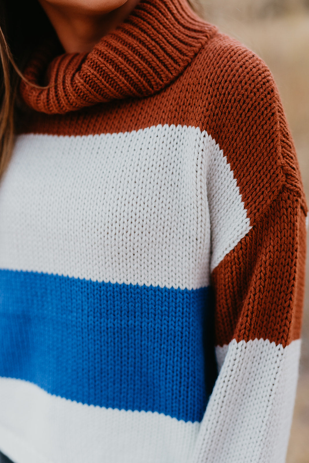 THE TAYLOR TURTLENECK SWEATER IN MULTI