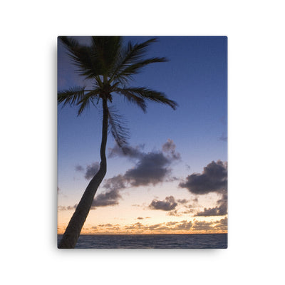 Overlooking Palm - Canvas - Find Your Coast Brand