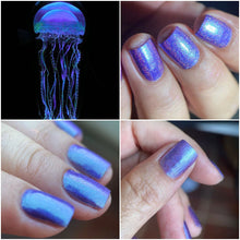 Load image into Gallery viewer, Esmaltes da Kelly - Jellyfish