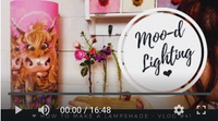 Moo-d Lighting Vlog #41