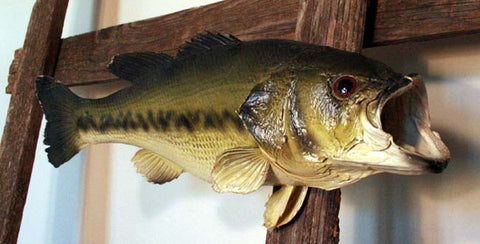 Vintage Bass Fish Mount