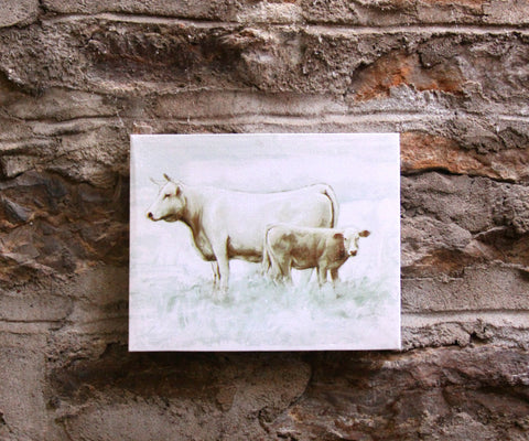 White Bull with Calf Canvas Print