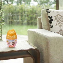 Load image into Gallery viewer, ST Pet Odor Remover Fruity Room Air Freshener 400ml - Tokyo-On