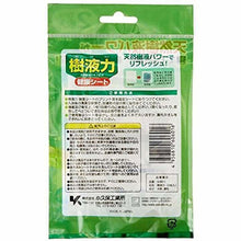 Load image into Gallery viewer, Kokubo Detox Foot Care Pads, Sap 2 Sheets - Tokyo-On