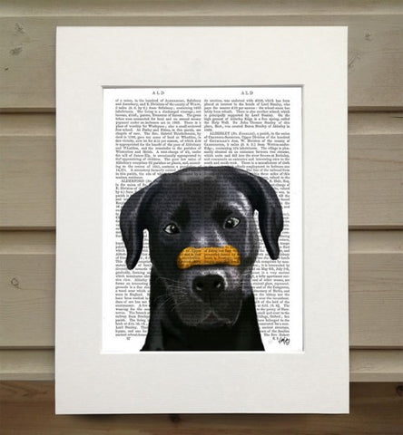 Black Labrador w/ Bone on Nose Book Print