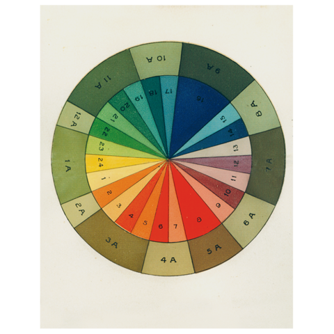 "Color Wheel (p 177) - 11"" x 14"" Rect. Tray"