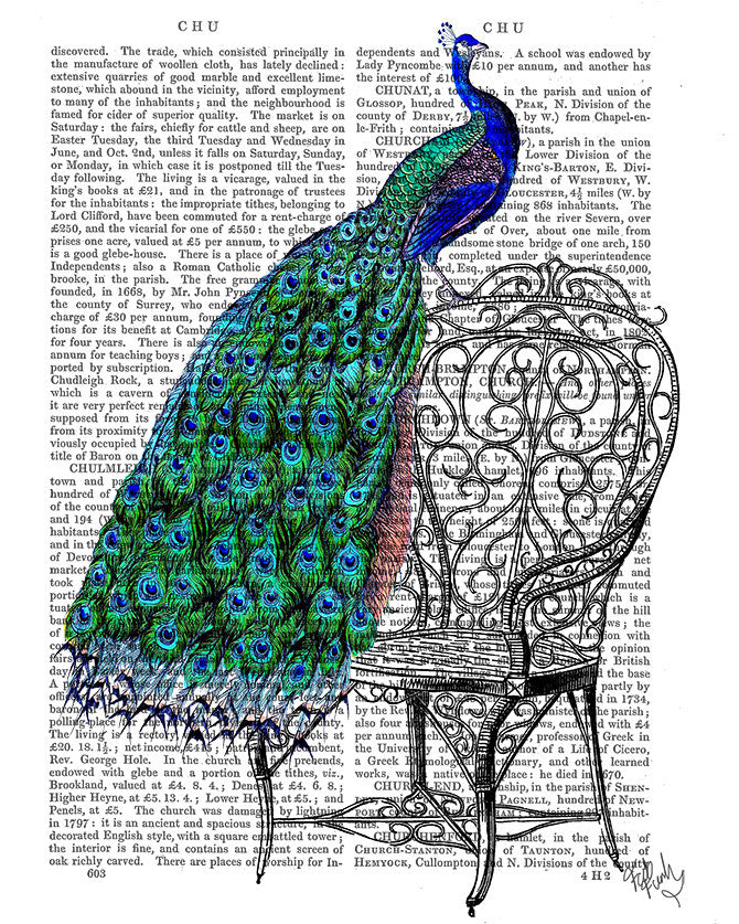 Peacock on Chair Book Print