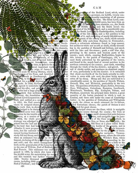 Hare with Butterfly Cloak Book Print