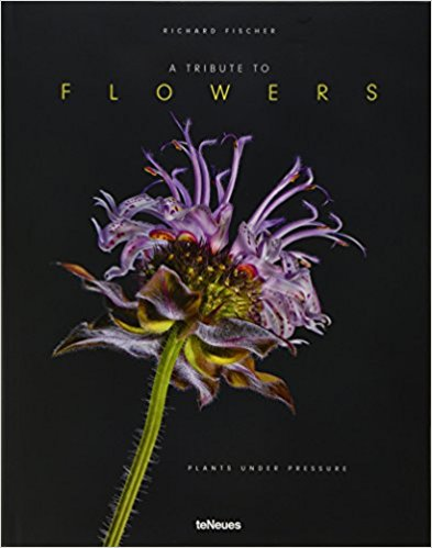 A Tribute to Flowers: Plants Under Pressure - Hardcover
