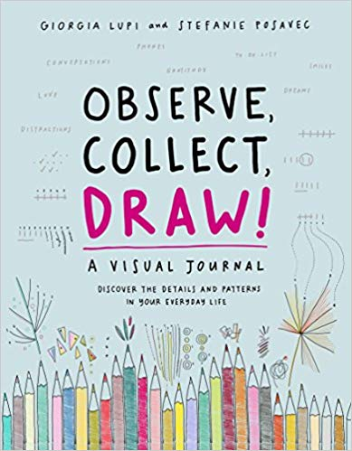Observe, Collect, Draw!: A Visual Journal - Diary