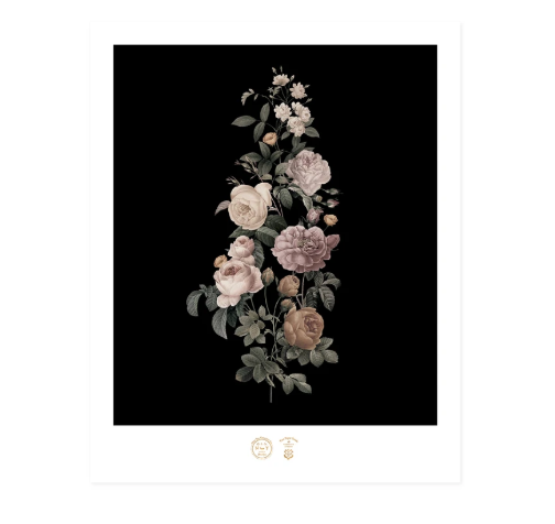 Antique Roses Print