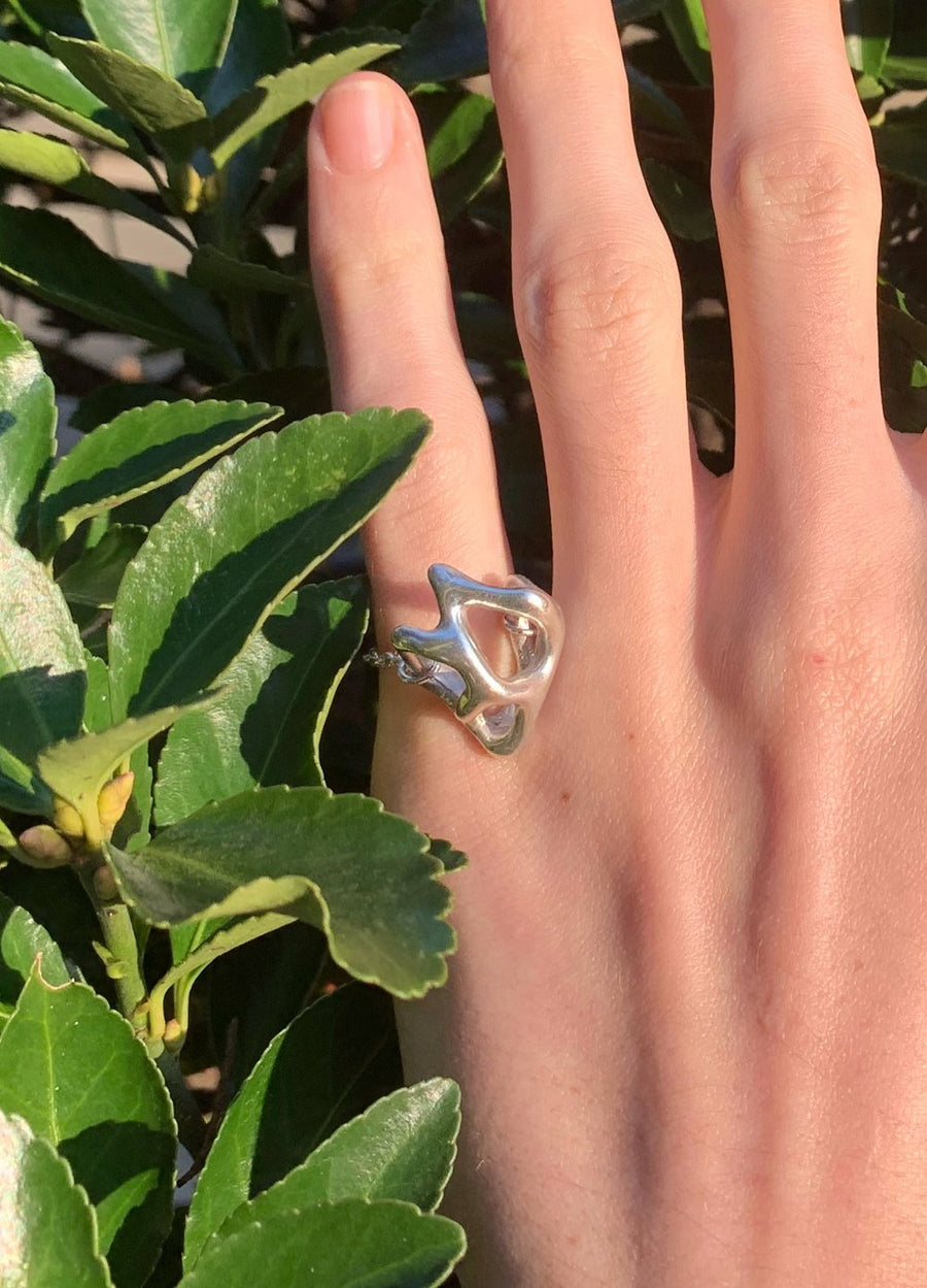 Cell Shape Ring