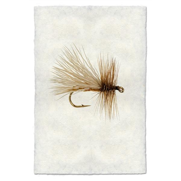 Fly Fishing Print - Caddis Variant