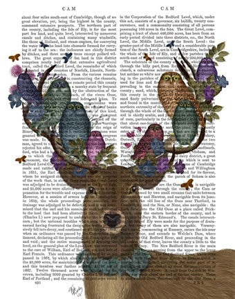 Deer Birdkeeper with Owls Book Print