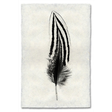 Feather #2 Print
