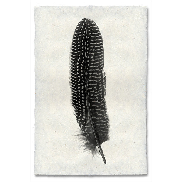Feather #5 Print