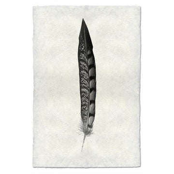 Feather #11 Print