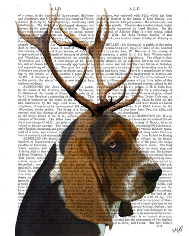 Basset Hound and Antlers Book Print