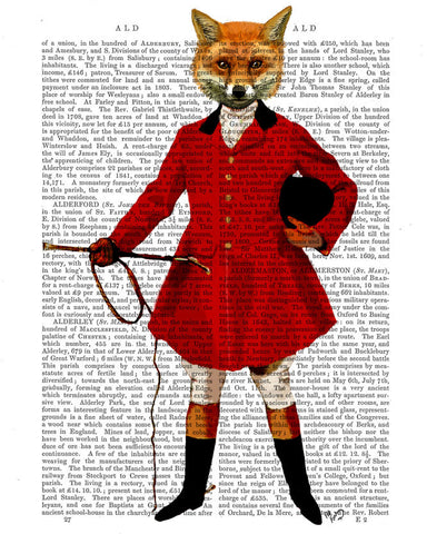 Fox Hunter Book Print