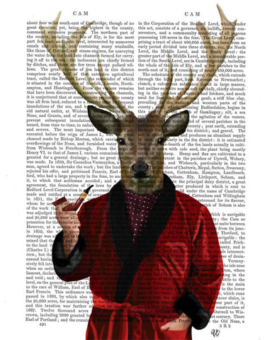 Deer in Smoking Jacket Book Print
