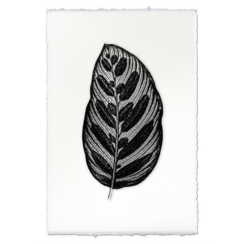 "Leaf Print ""Striped"""