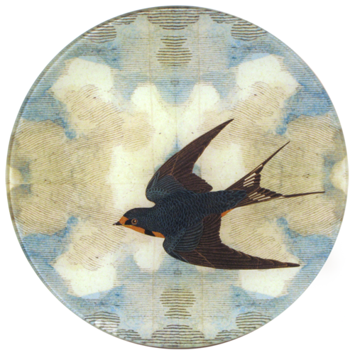 Swallow in Flight, Left and Right