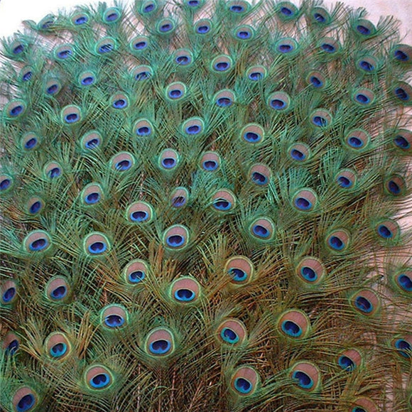 20 Pcs/lot Top quality natural peacock feathers for Crafts party 25-32CMjewelry Home vase Accessories‼️REDUCERE‼️
