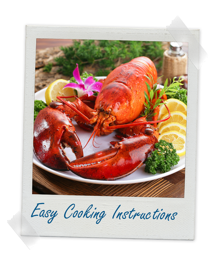 Cooked Whole Lobster from Crazy Fresh Lobsters