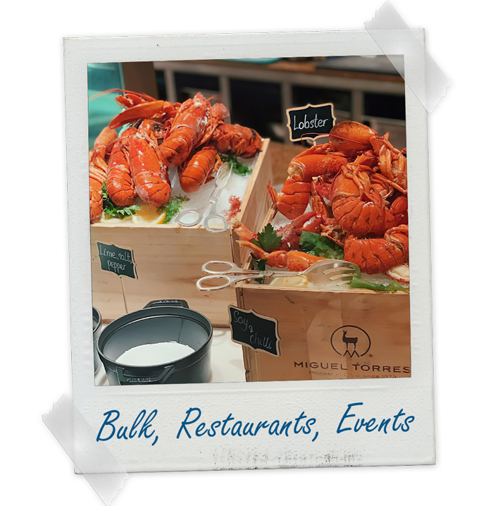 Lobster Delivery for Wholesale, Restaurant and Events - Crazy Fresh Lobsters