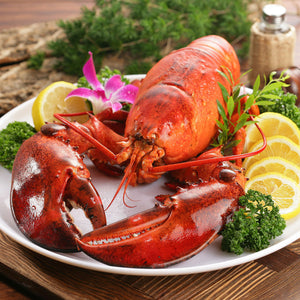 3lb Atlantic Lobsters - Crazy Fresh Lobsters