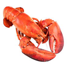 Load image into Gallery viewer, Virtual Team Dinner Lobster Kit