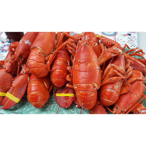 Lobster Party Pack