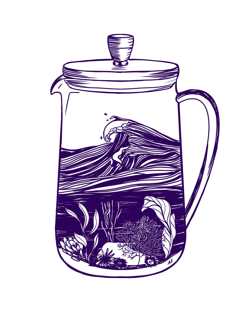Purple ocean french press illustration by Aimee Schreiber