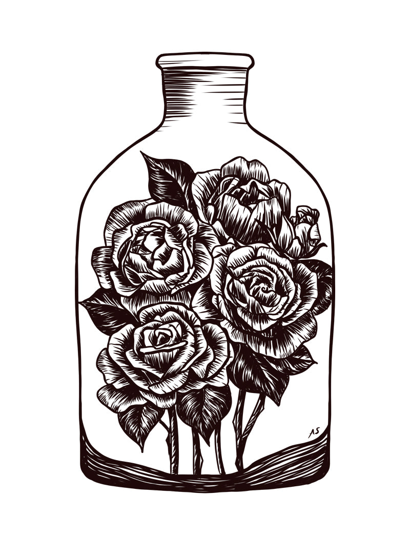 Roses illustration by Aimee Schreiber