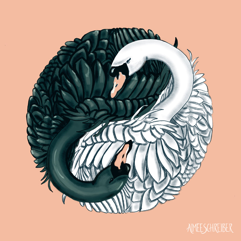 Swan Yin Yang Illustration by Aimee Schreiber